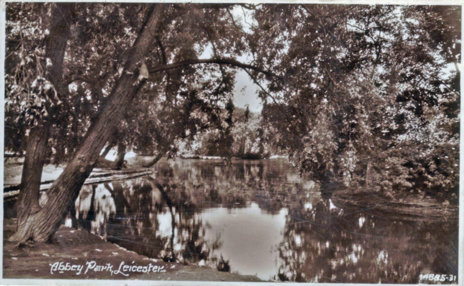 Abbey Park, Leicester. 1921-1940: The lake with trees. Franked 1935 (File:1033)