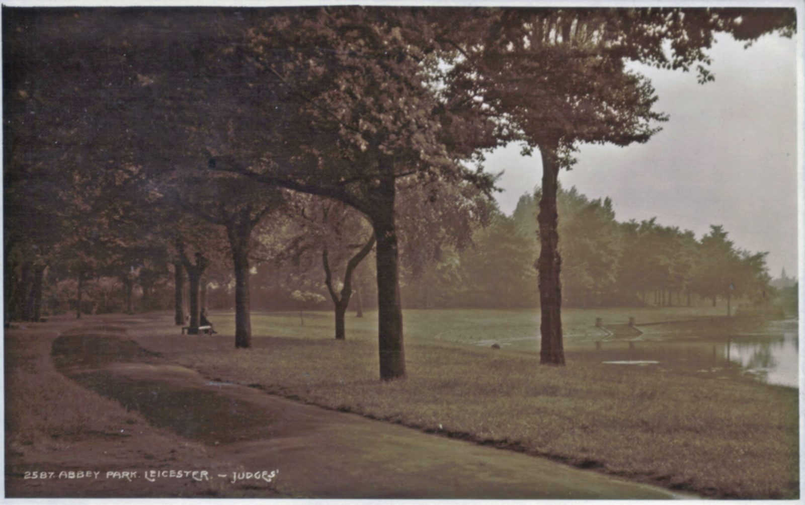 Abbey Park, Leicester. Undated: An avenue beside the lake. (File:1042)