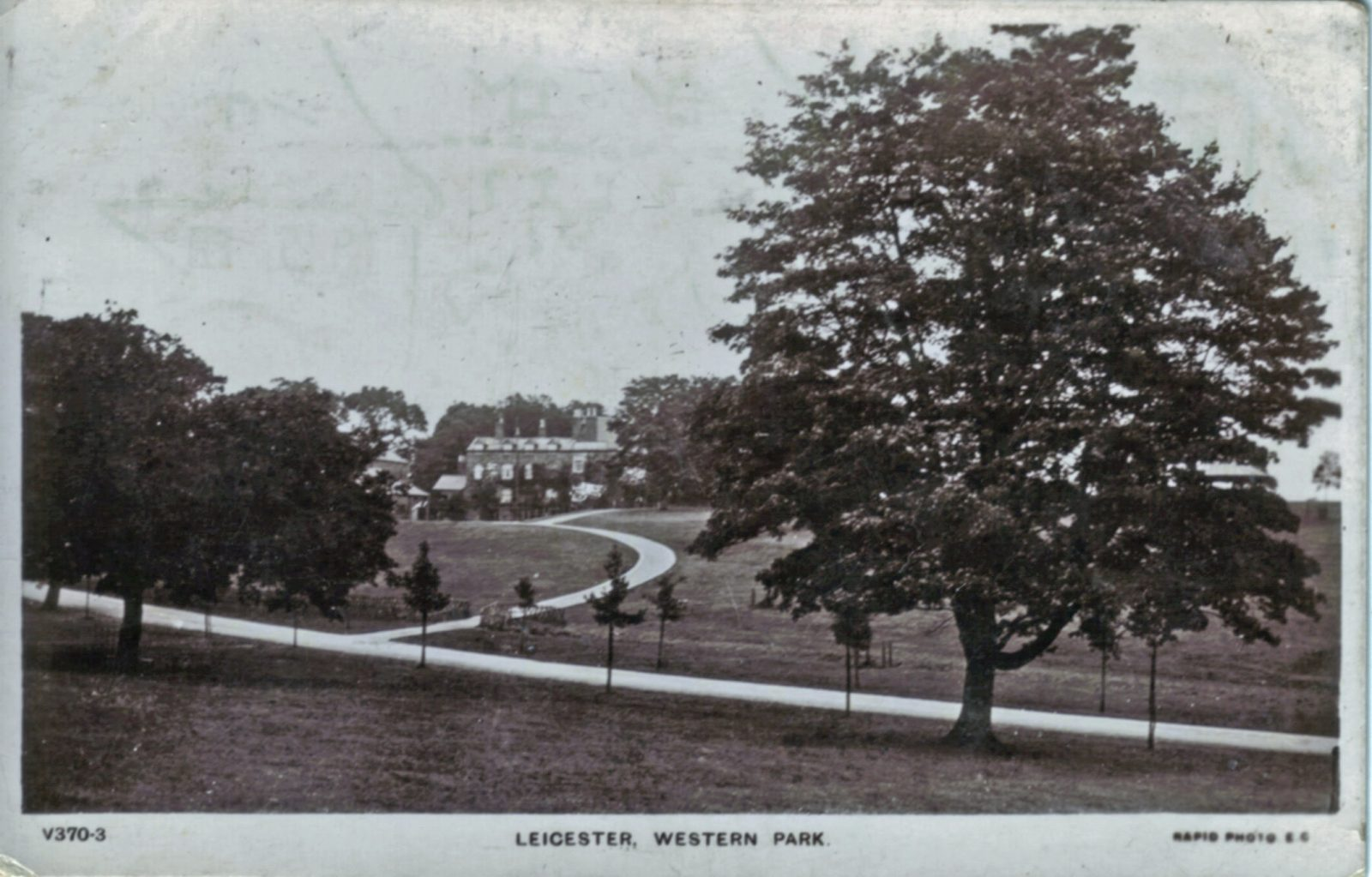 Western Park, Leicester. 1901-1920: Path leading to the Old Hall. Foreground tree. Posted 1904-10 (File:1090)