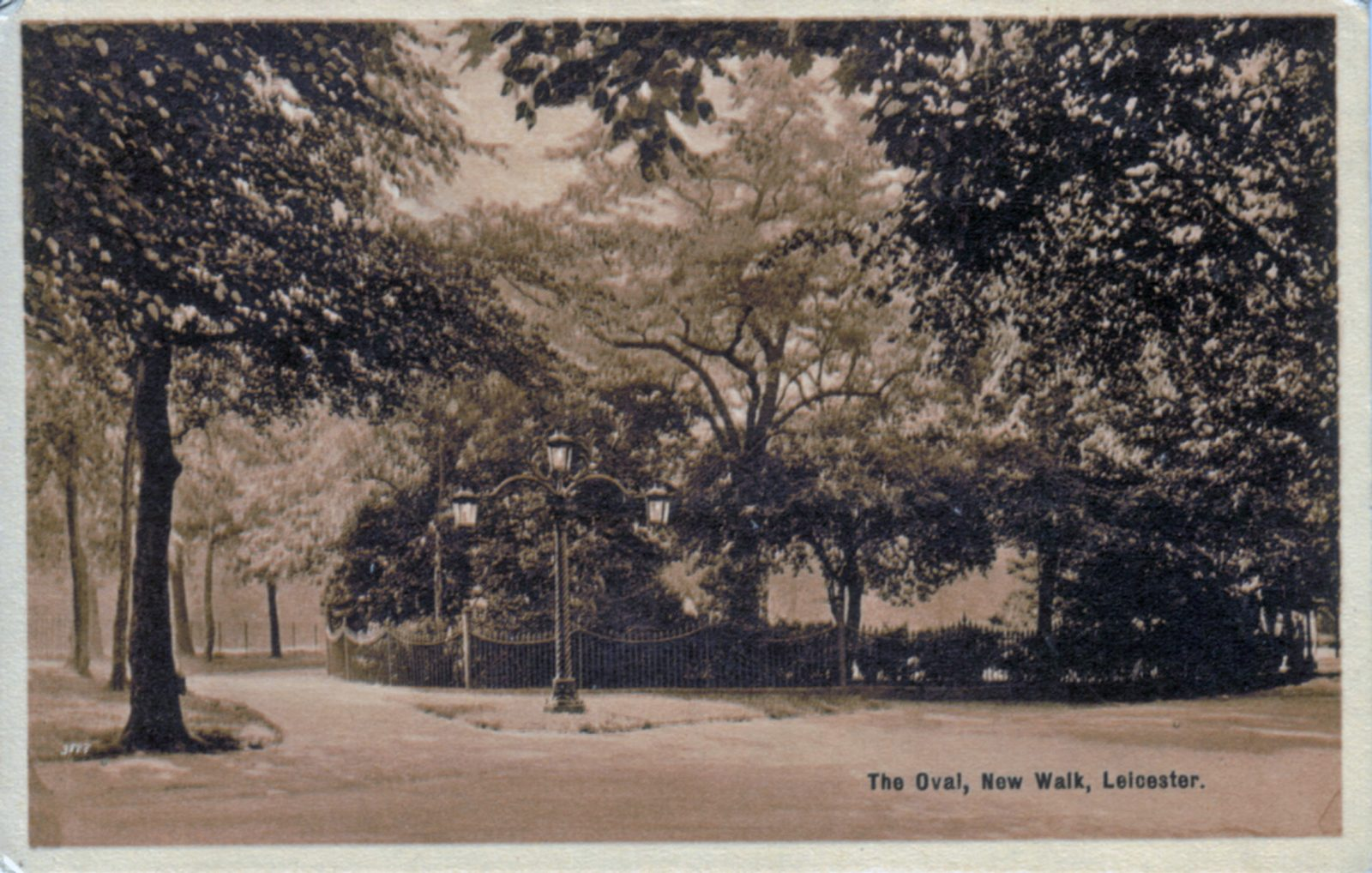 New Walk, Leicester. Undated: The Oval: a secluded area surrounded by trees, shrubs and railings (File:1104)