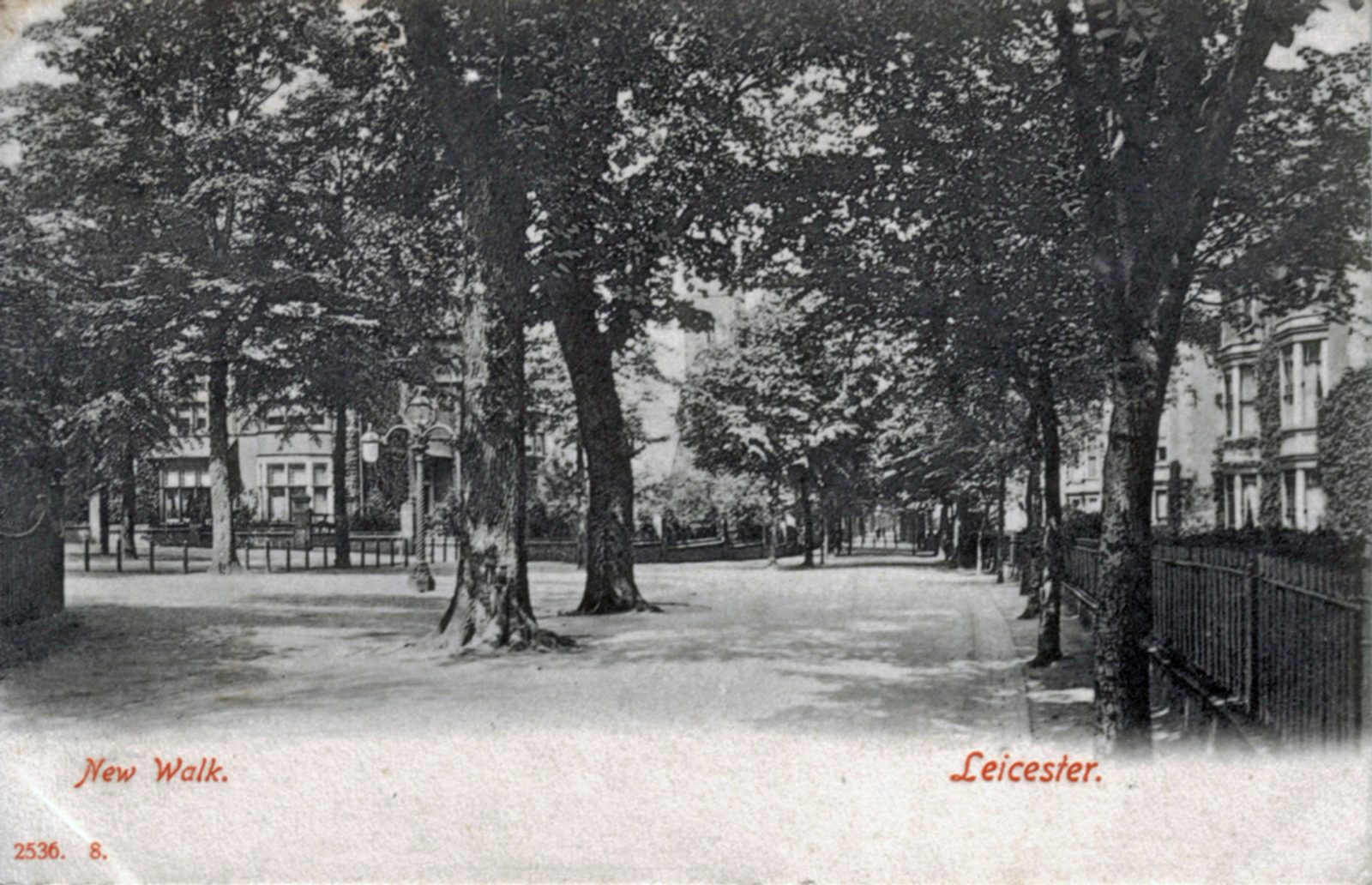 New Walk, Leicester. 1901-1920: A general view of New Walk with houses to either side. Franked 1904 (File:1107)