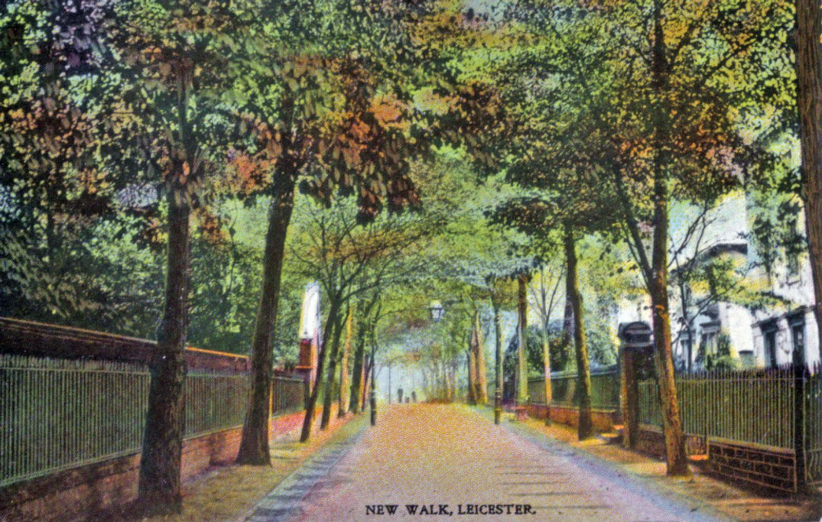 New Walk, Leicester. 1901-1920: General view with New Walk extending into distance (File:1110)