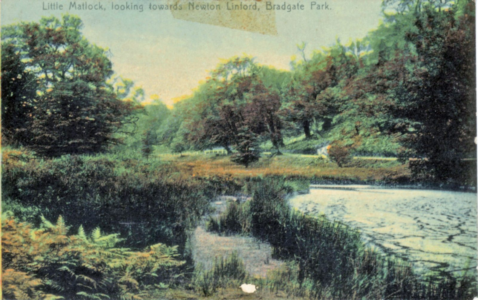 Bradgate Park, Leicester. 1901-1920: The River near Newtown Linford Entrance. Franked 1905 (File:1115)