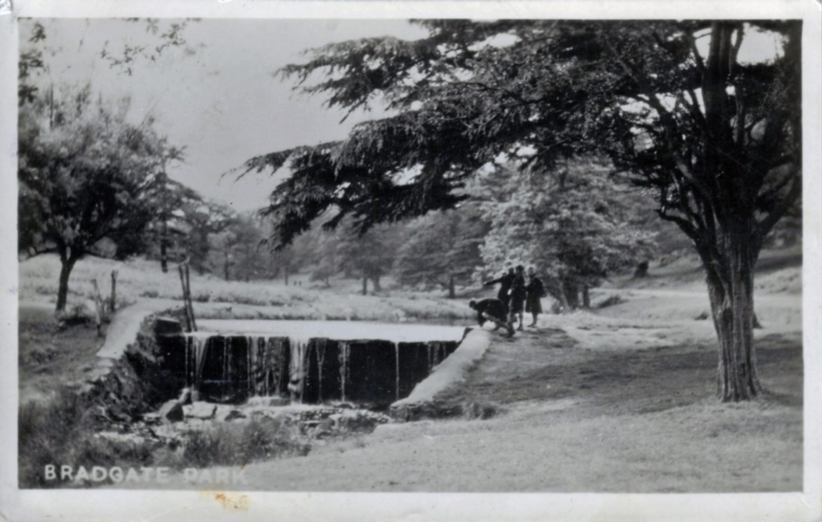 Bradgate Park, Leicester. 1941-1960: The river and weir near Newtown Linford entrance. Franked 1951 (File:1117)