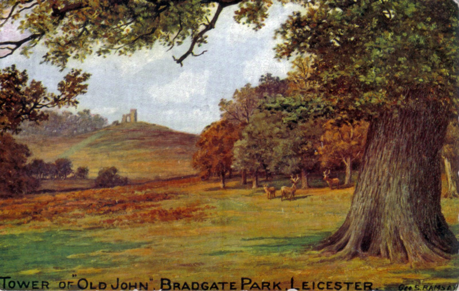 Bradgate Park, Leicester. 1901-1920: A painting of Old John . Taken from an oil painting by Geo. S. Ramsey. Franked 1907 (File:1121)
