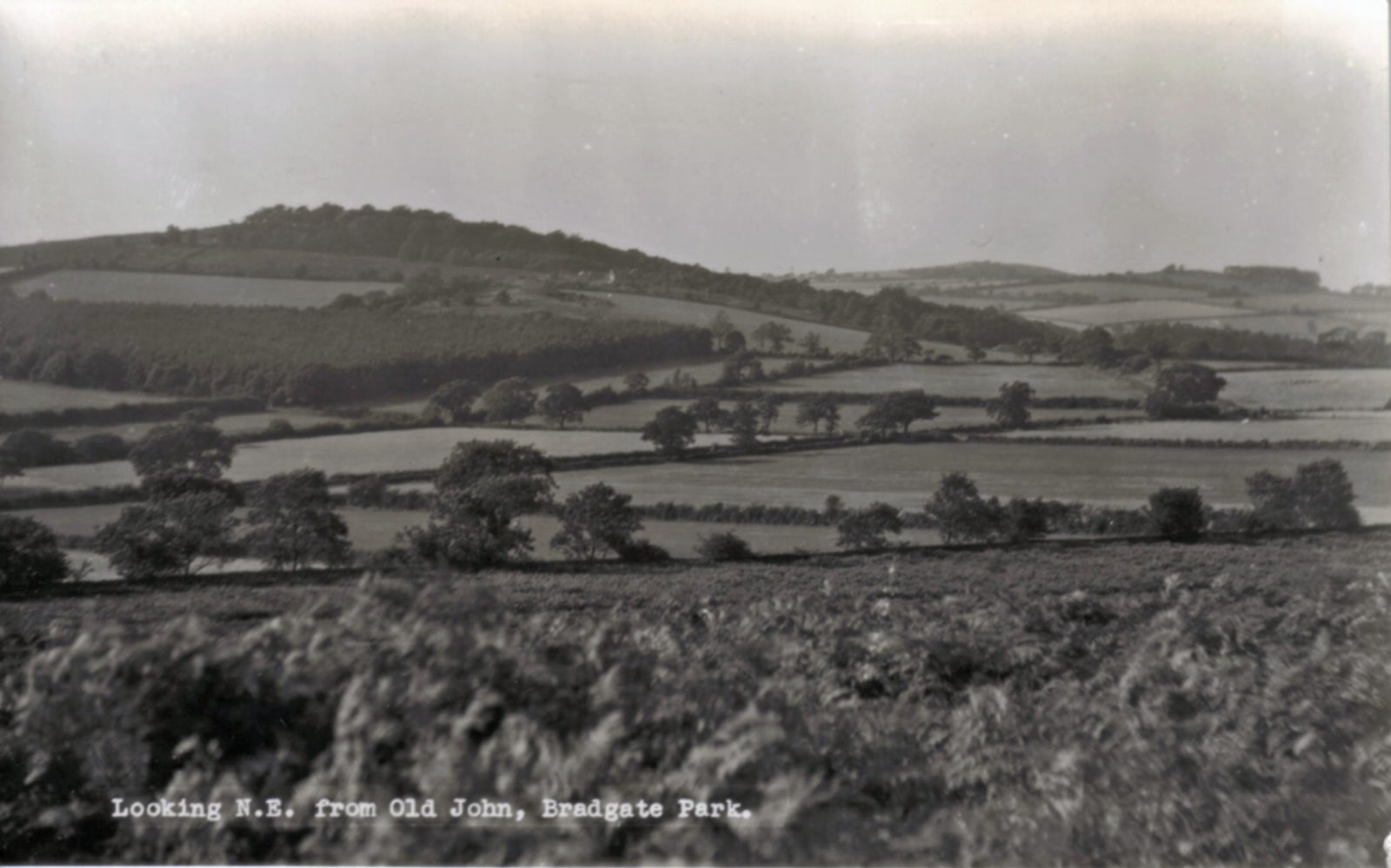 Bradgate Park, Leicester. Undated: Looking north-east from Old John, to open countryside. (File:1130)