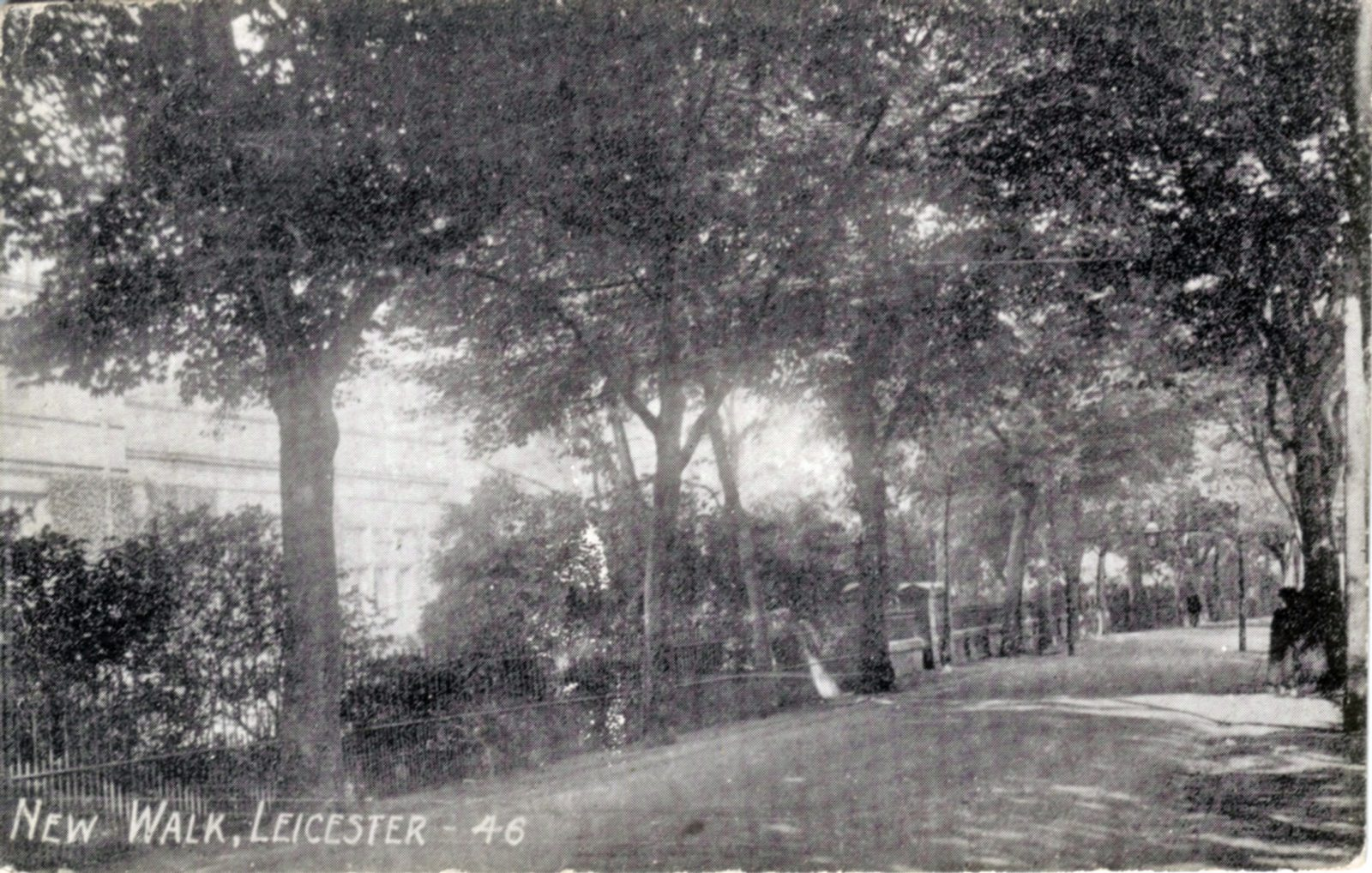 New Walk, Leicester. 1901-1920: New Walk with the Town Museum in background. Franked 1905 (File:1193)