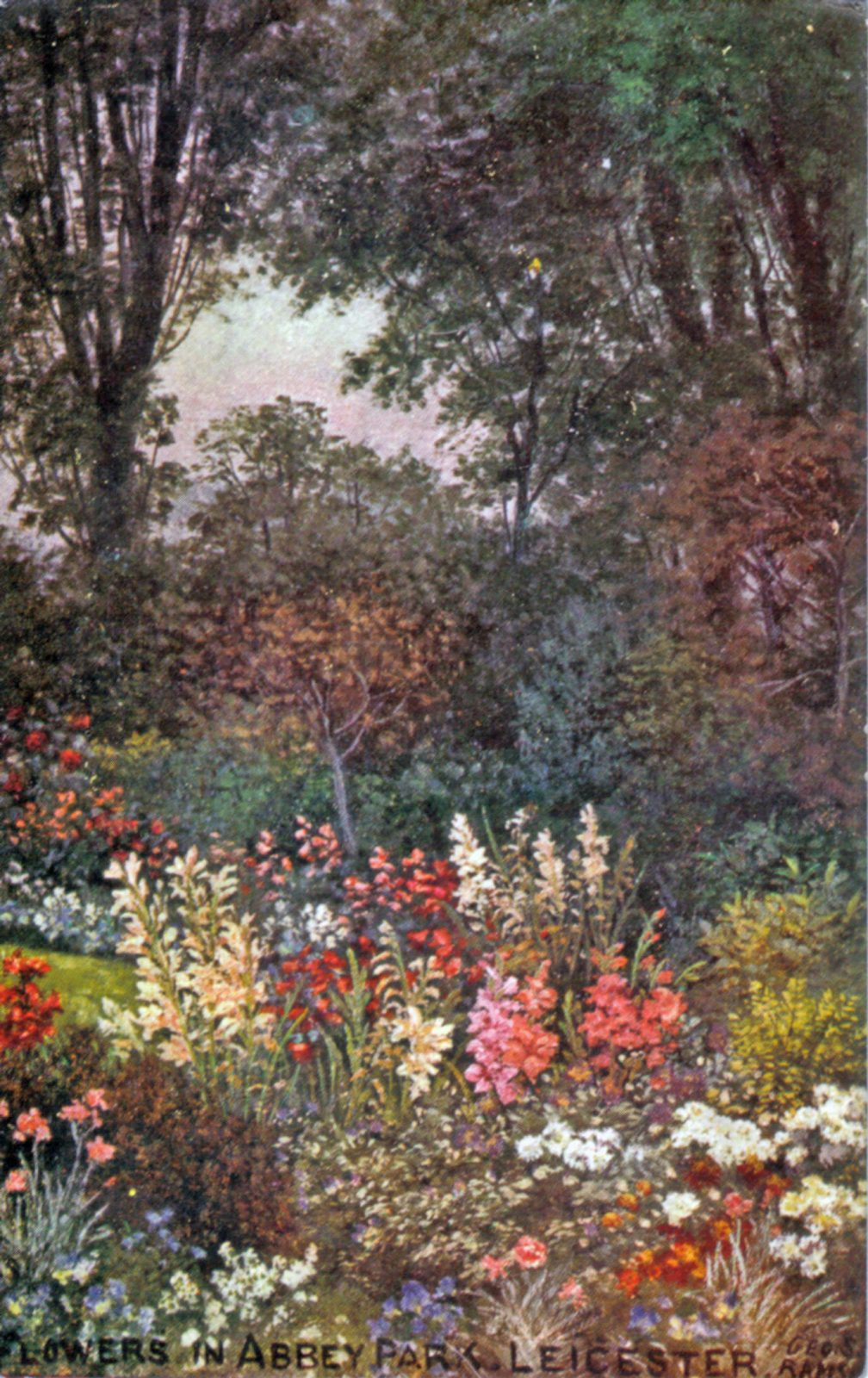 Abbey Park, Leicester. 1901-1920: Flowers in Abbey Park. From an oil painting by Geo. S. Ramsey. Franked 1912 (File:1210)