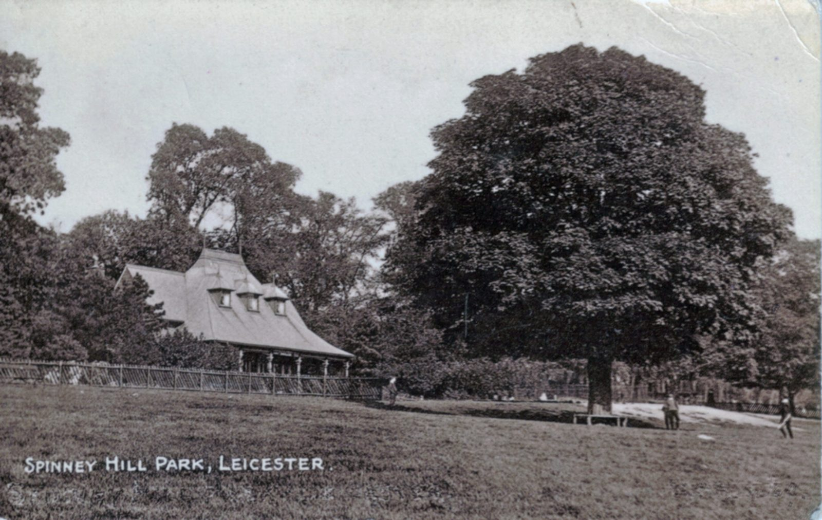 Spinney Hill Park, Leicester. 1901-1920: The Pavilion and specimen tree. Franked 1916 (File:1243)