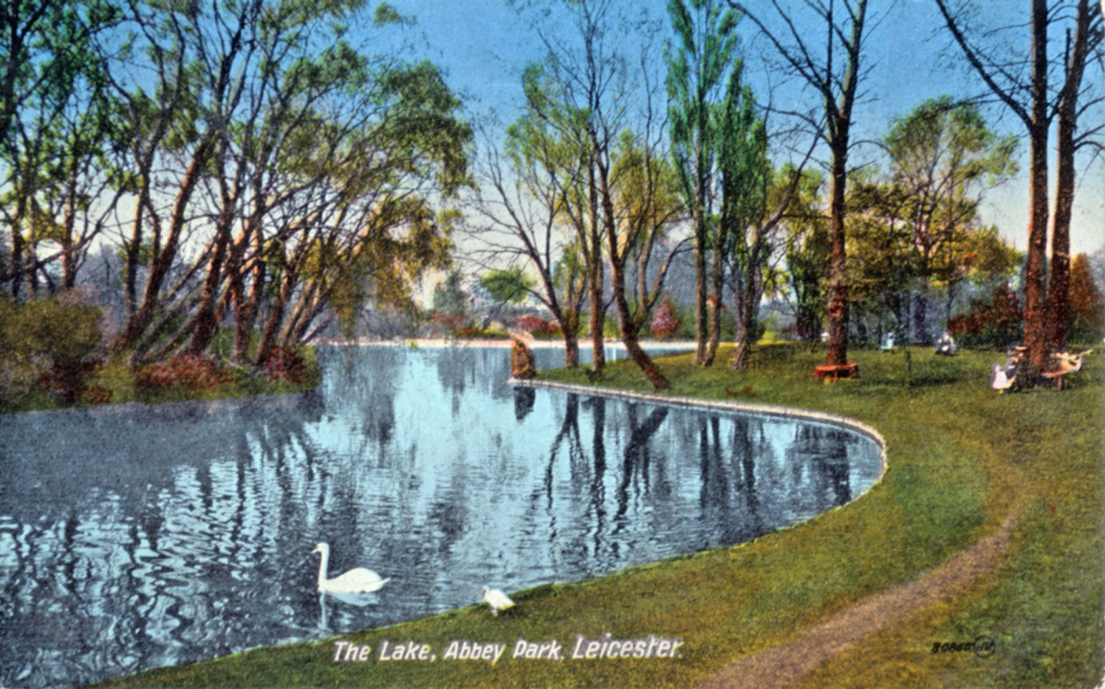 Abbey Park, Leicester. 1901-1920: The Lake. (File:1281)