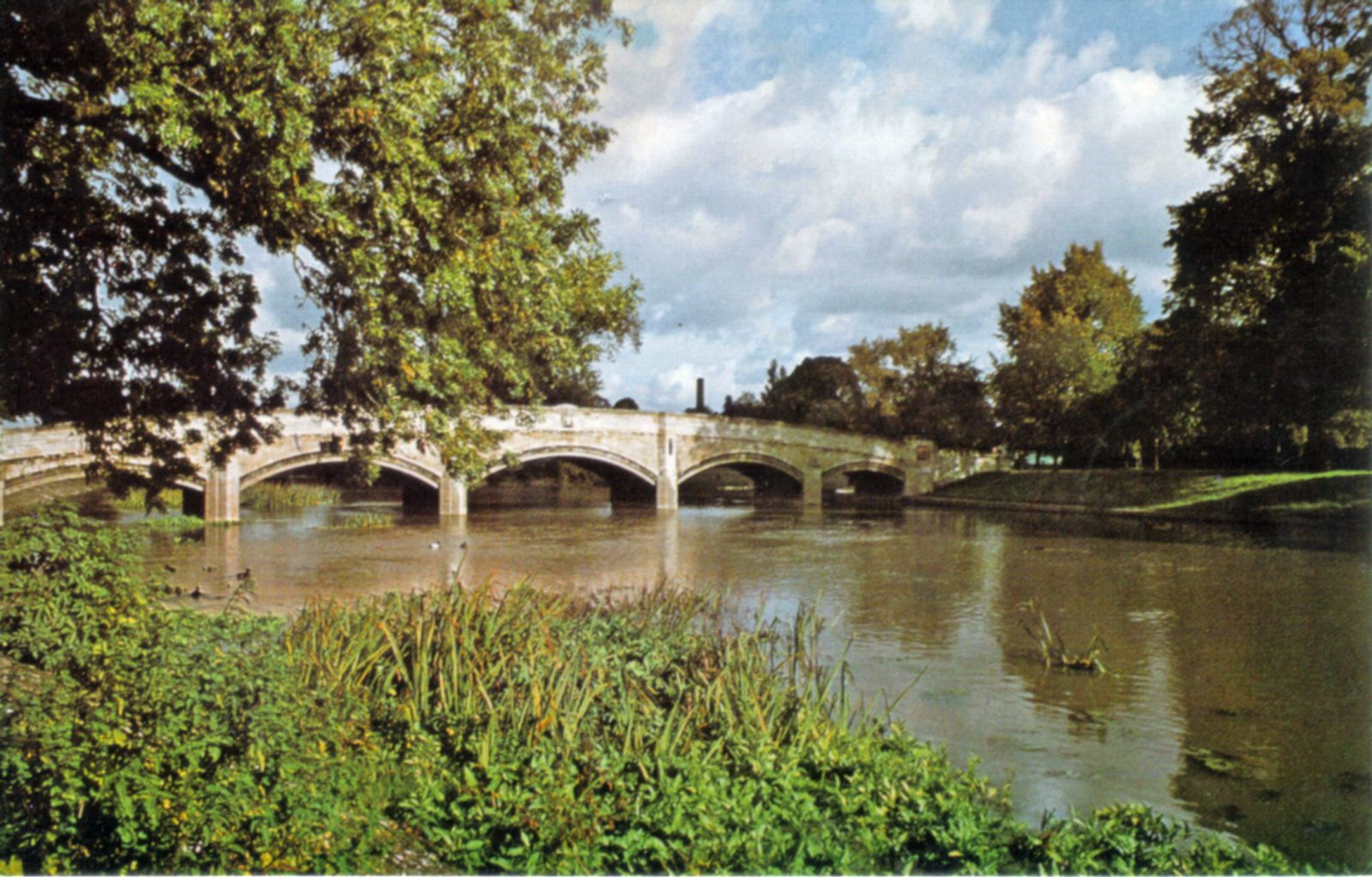Abbey Park, Leicester. Undated: The River Soar and Abbey Bridge. (File:1437)
