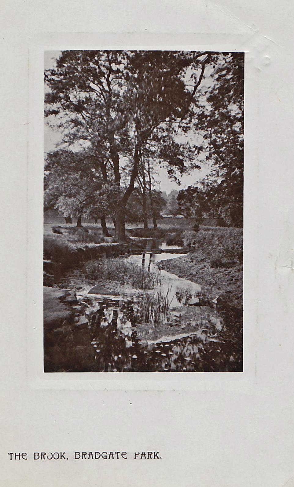 Bradgate Park, Leicester. 1901-1920: The brook. Franked 1907 (File:1502)