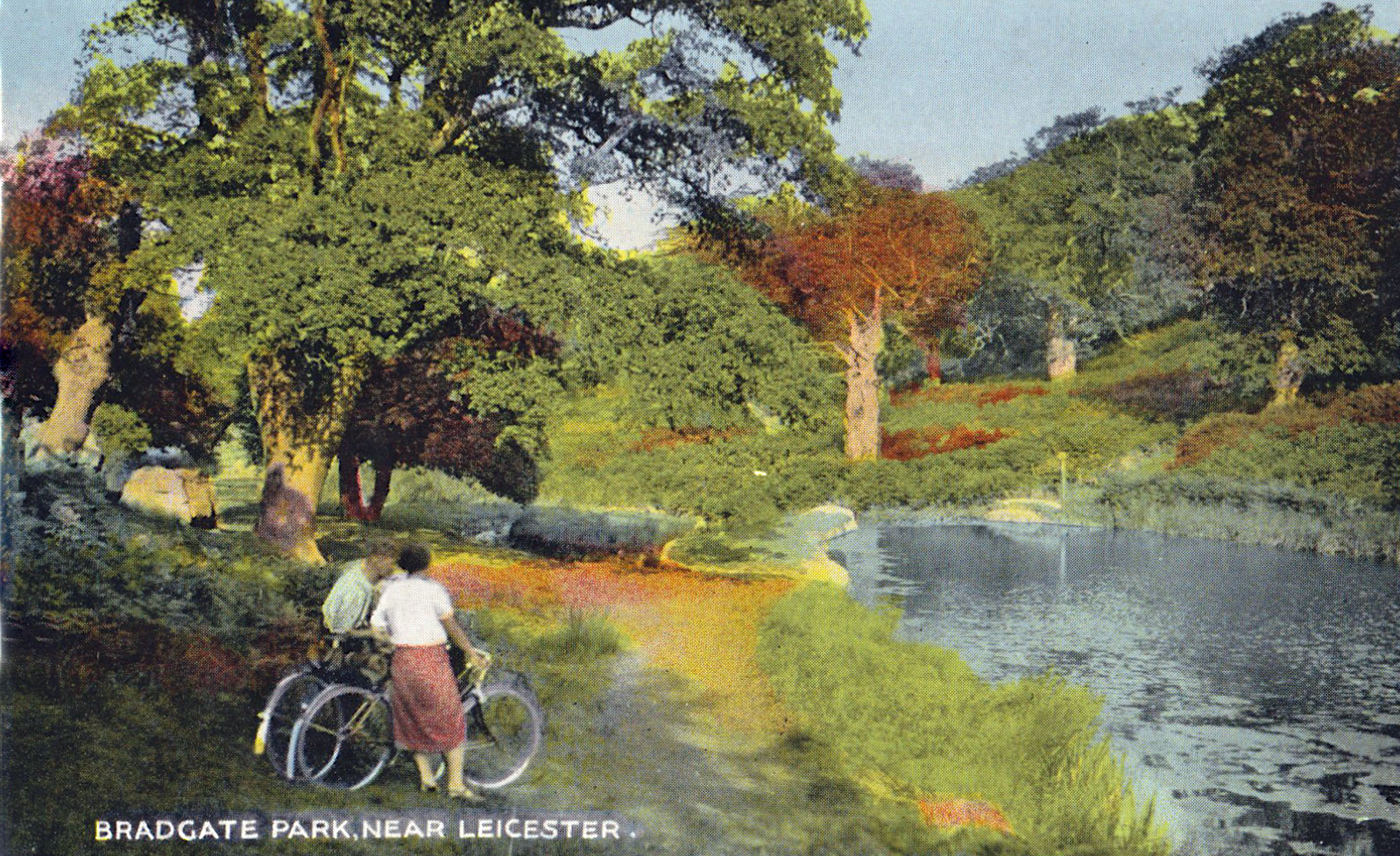 Bradgate Park, Leicester. 1941-1960: View across lake. Franked 1955 (File:1509)