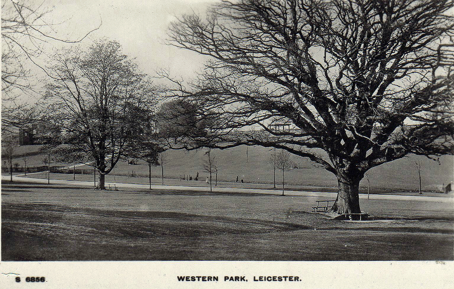 Western Park, Leicester. 1901-1920: Board view across the park (File:1526)