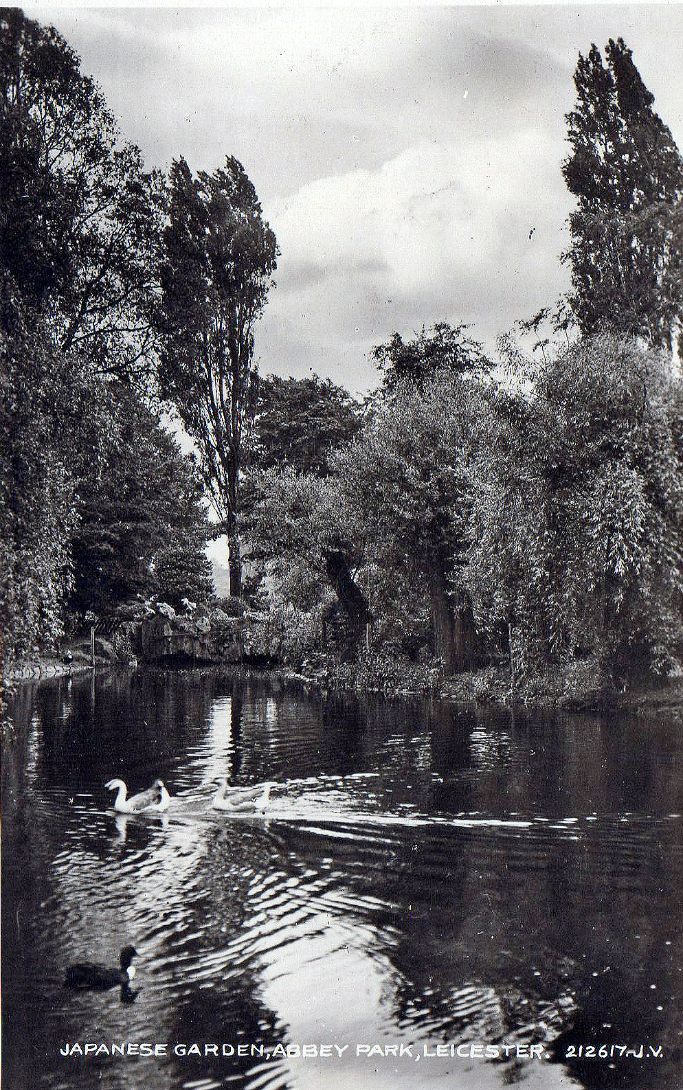Abbey Park, Leicester. Undated: Lake in the Japanese garden (File:1532)